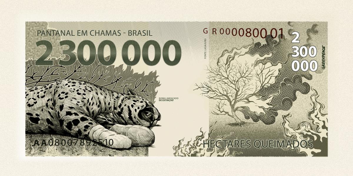 Greenpeace lança cédula para alertar sobre queimadas no Pantanal